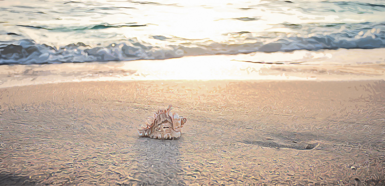 Summer,Coast,Sea