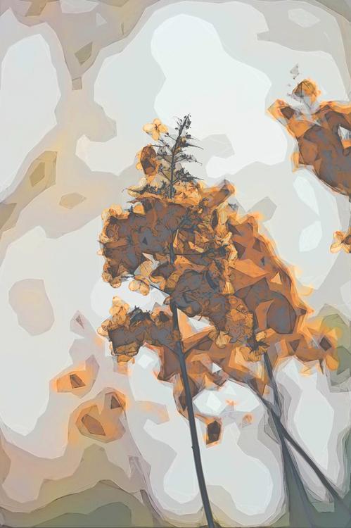Watercolor Paint,Art,Tree