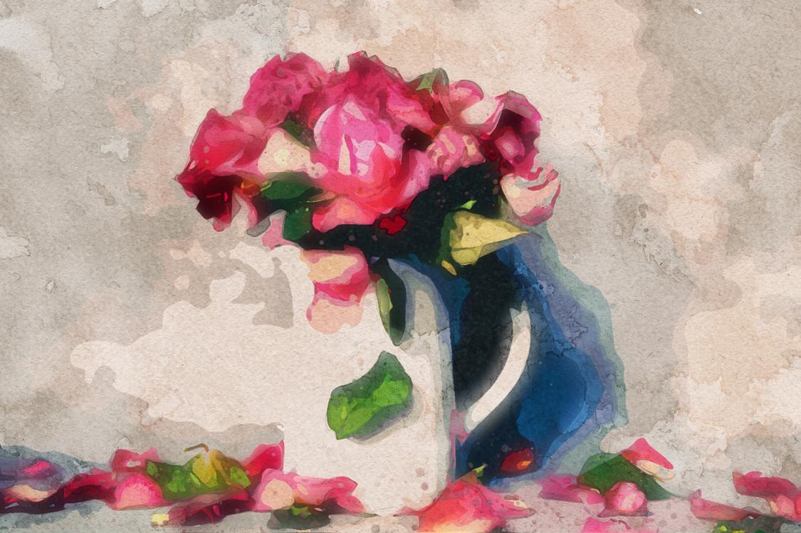 Pink,Flower,Perennial Plant