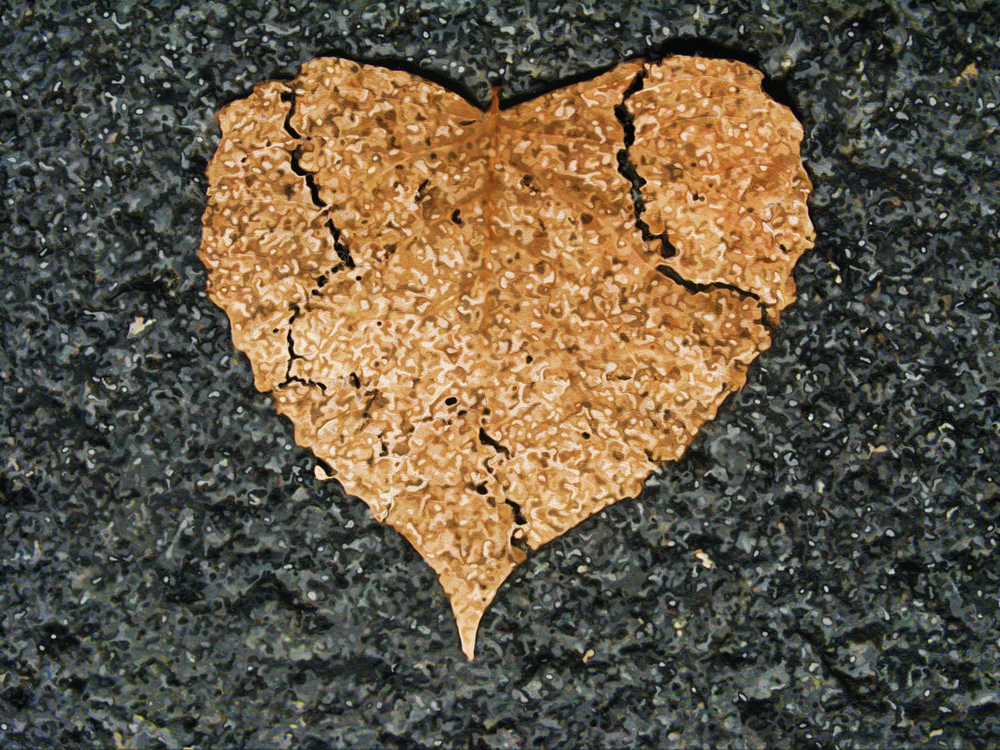 Heart,Soil,Road Surface