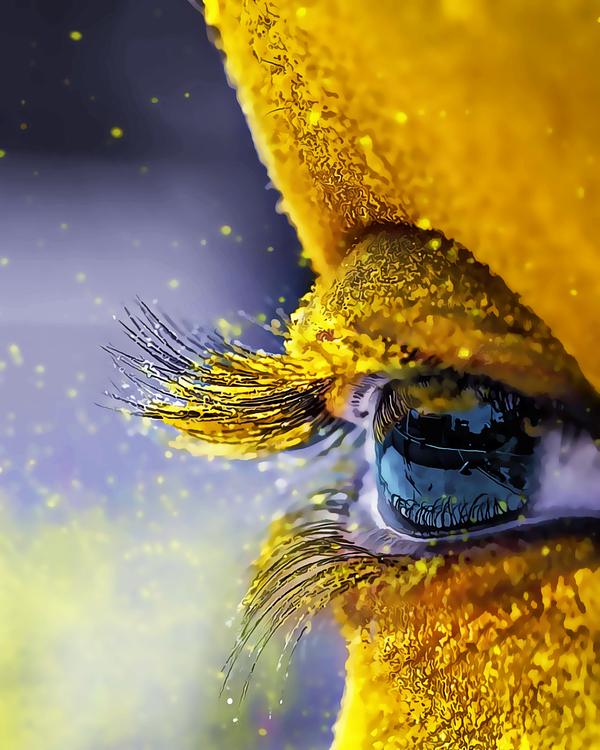 Yellow,Water,Flower