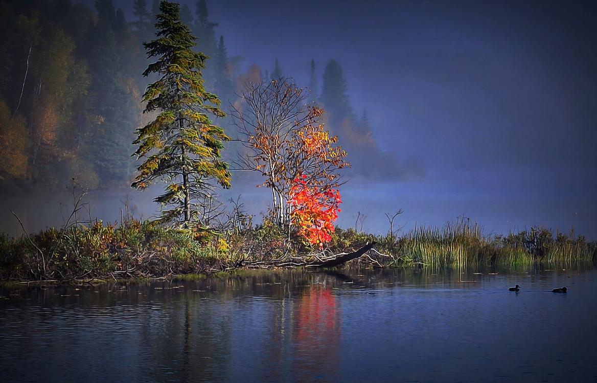 Nature,Reflection,Natural Landscape