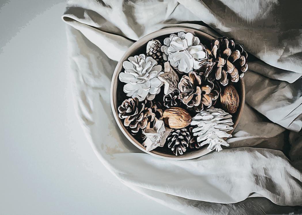 Still Life Photography,Cut Flowers,Textile