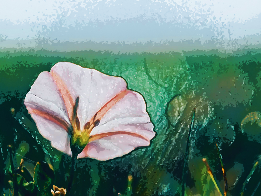 Flower,Watercolor Paint,Natural Landscape