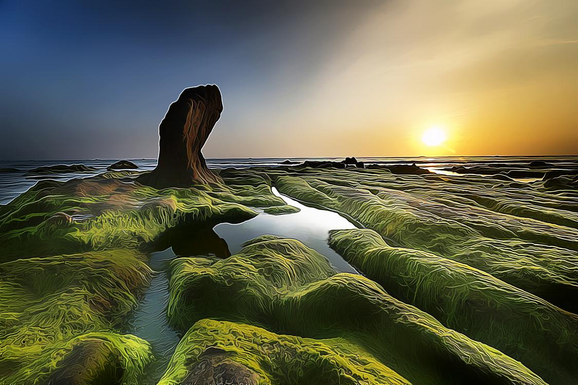 Nature,Water,Rock