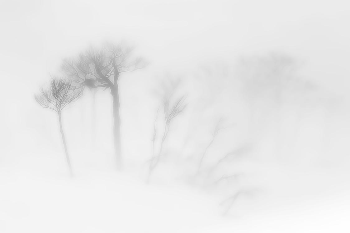 White,Drawing,Atmospheric Phenomenon
