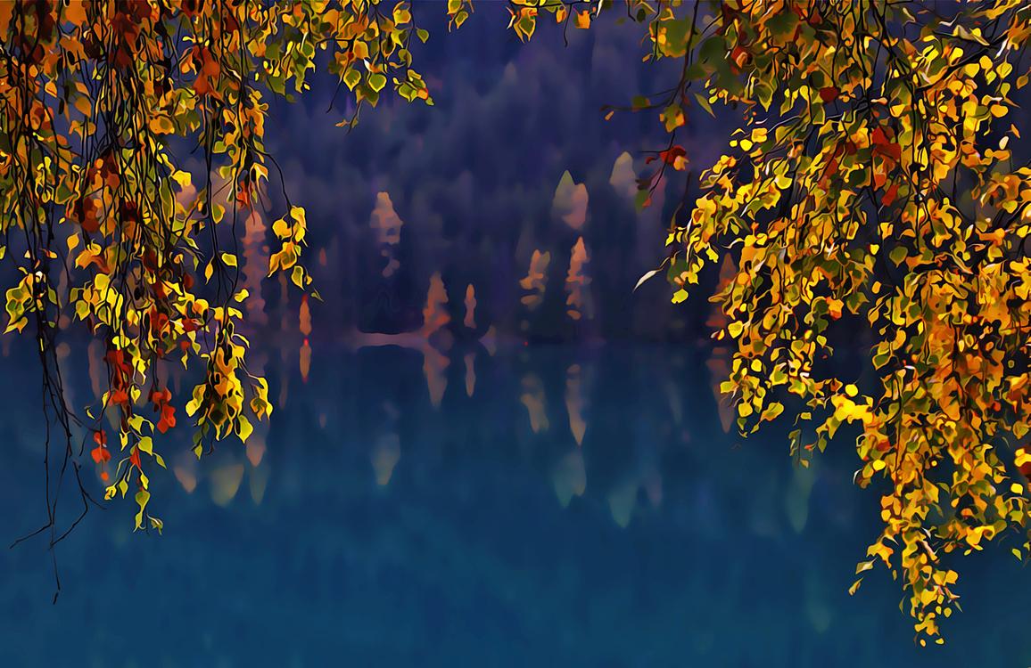 Nature,Tree,Yellow