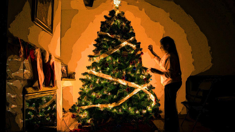 Tree,Christmas Tree,Christmas