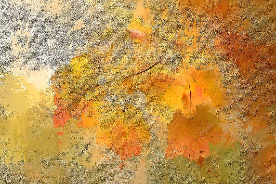 Painting,Yellow,Orange