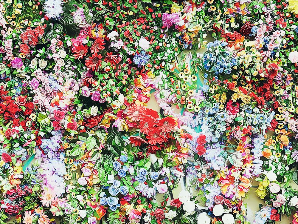 Flower,Plant,Spring