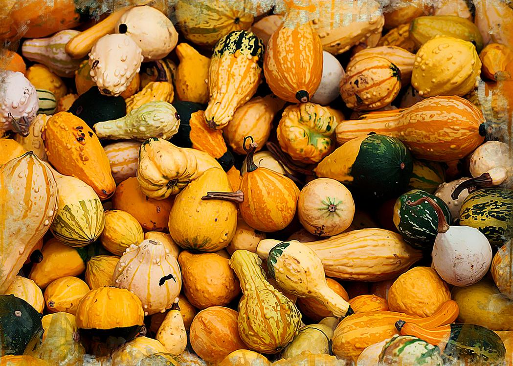 Natural Foods,Winter Squash,Vegetable