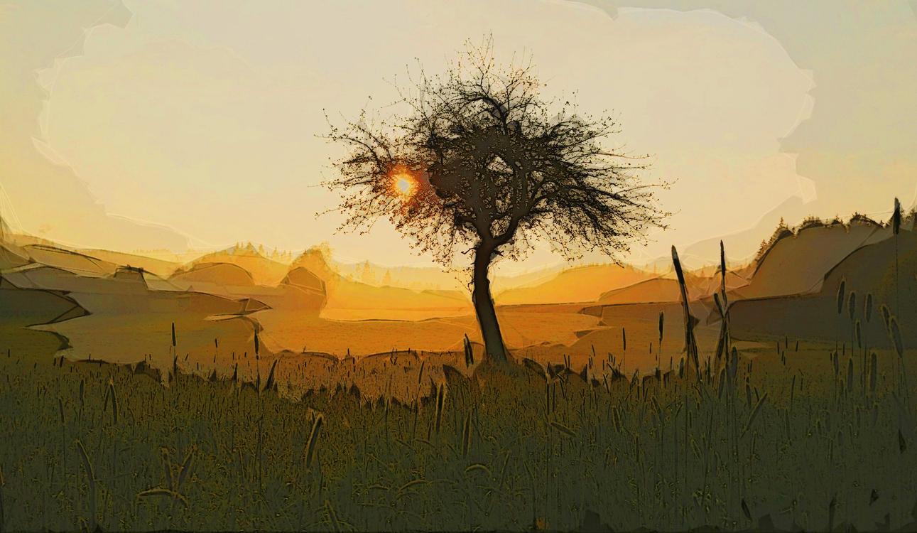 Nature,Natural Landscape,Savanna