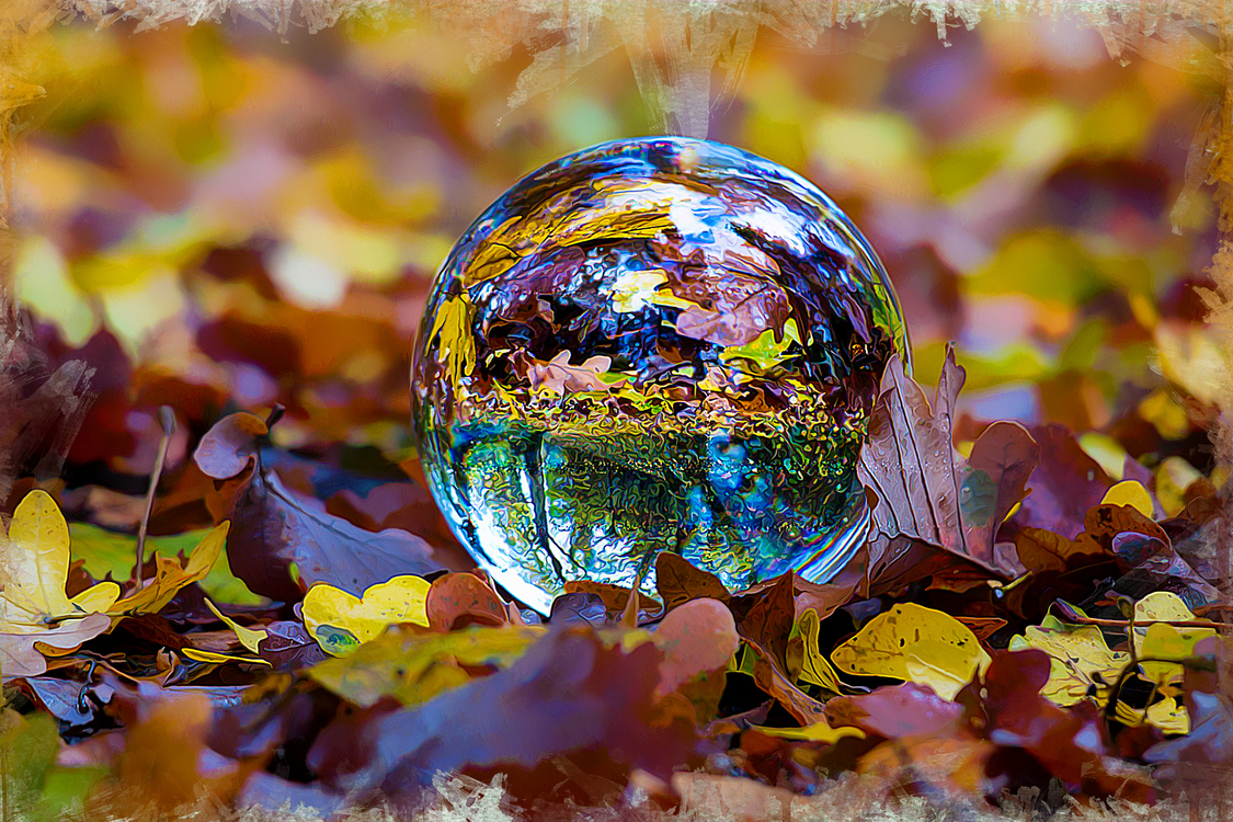 Sphere,Ball,Autumn