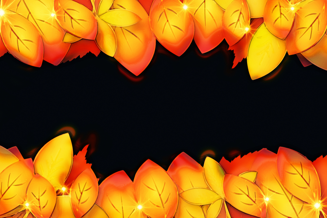 Orange,Petal,Yellow
