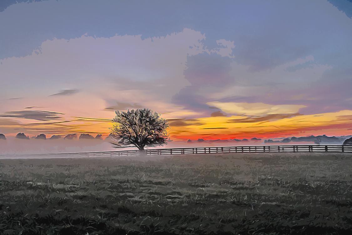 Sky,Natural Landscape,Nature
