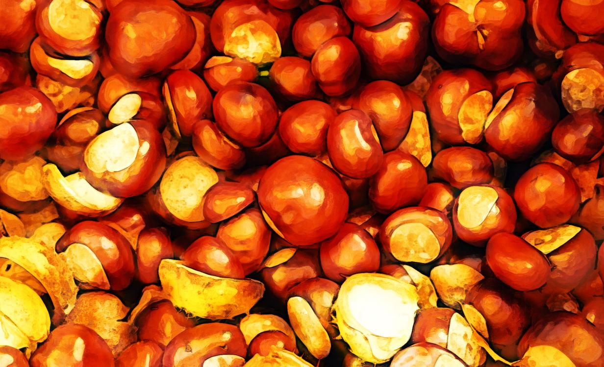 Natural Foods,Local Food,Food