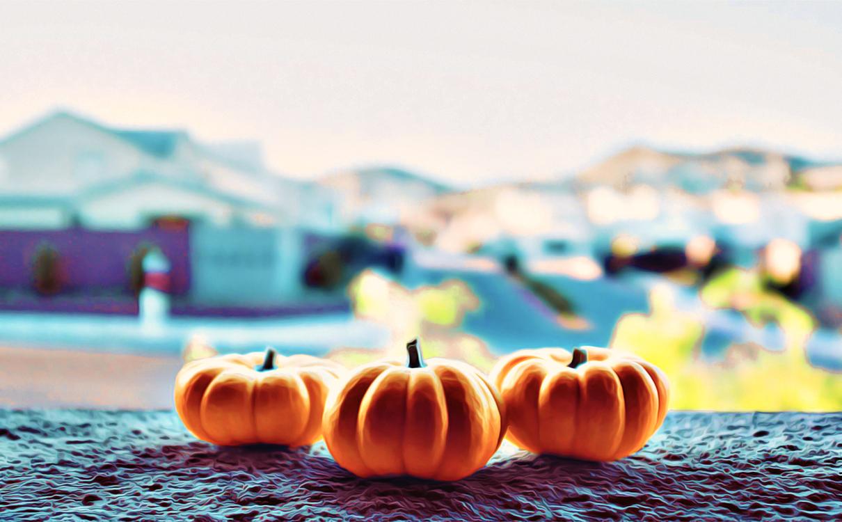 Pumpkin,Calabaza,Sky