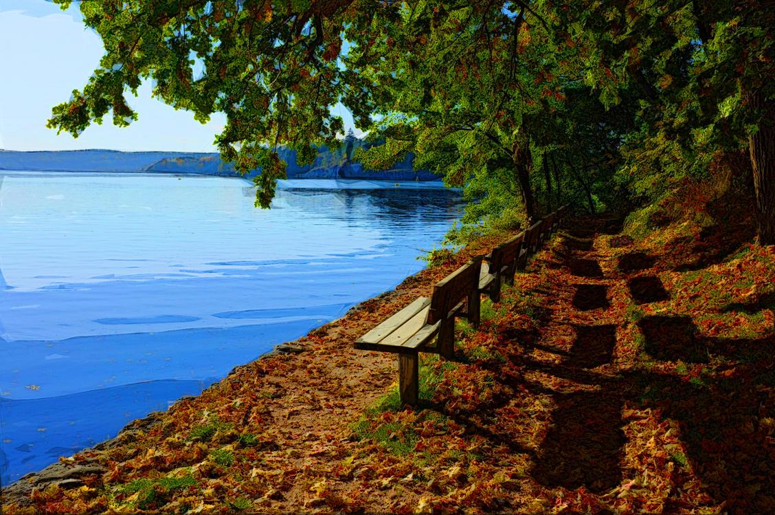 Nature,Natural Landscape,Water