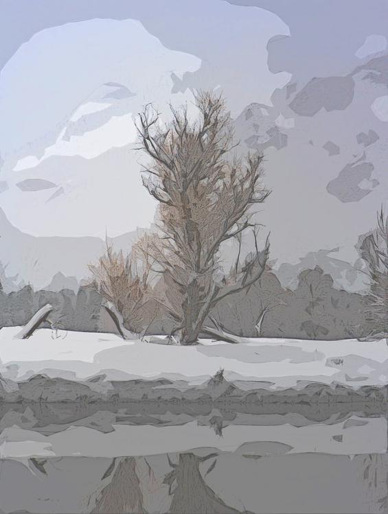 Tree,Drawing,Atmospheric Phenomenon