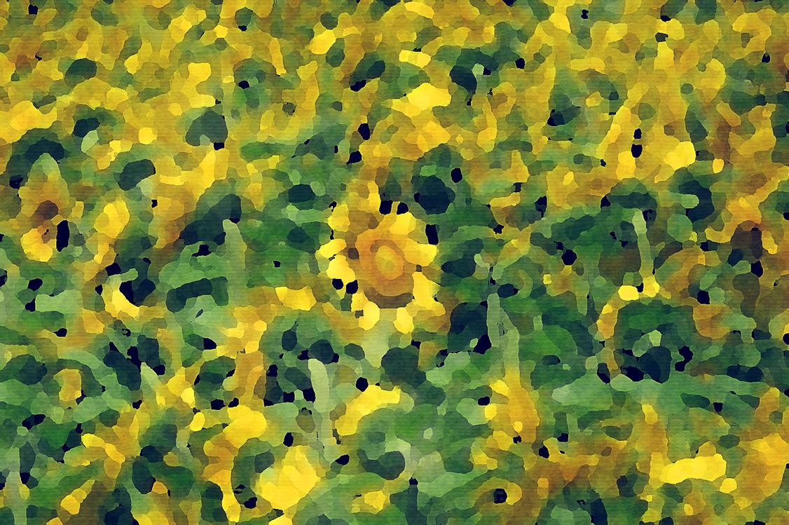 Yellow,Green,Flower
