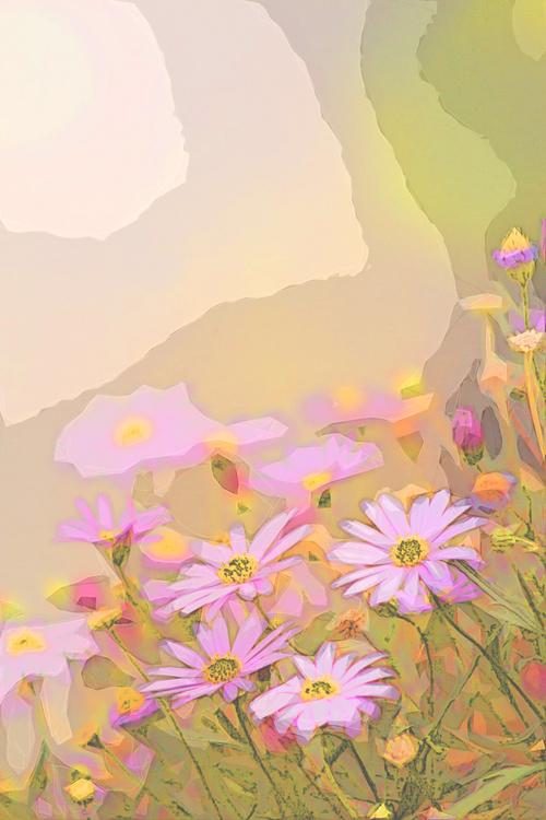 Flower,Pink,Petal