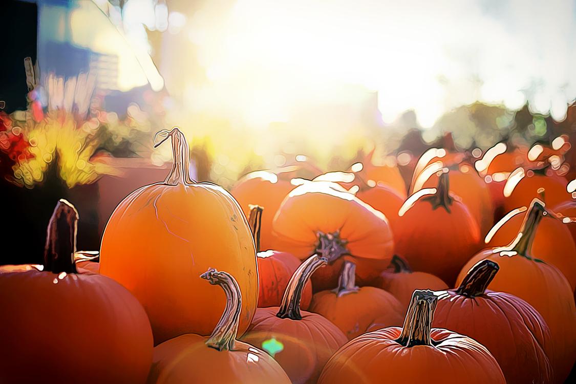 Natural Foods,Orange,Pumpkin