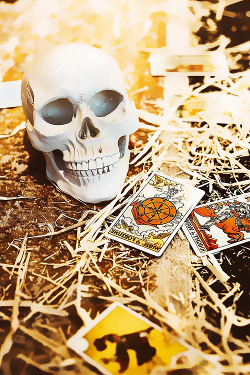 Skull,Bone,Skeleton