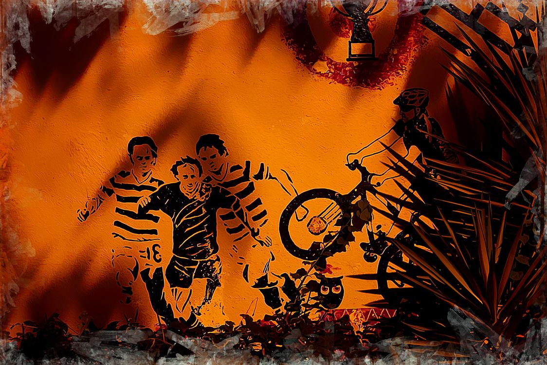 Orange,Visual Arts,Graphic Design