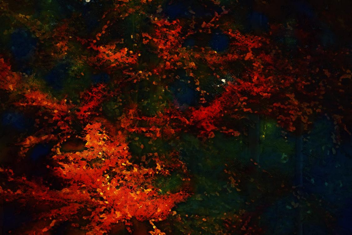 Red,Orange,Sky