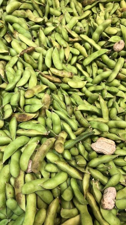 Green Bean,Edamame,Vegetarian Cuisine