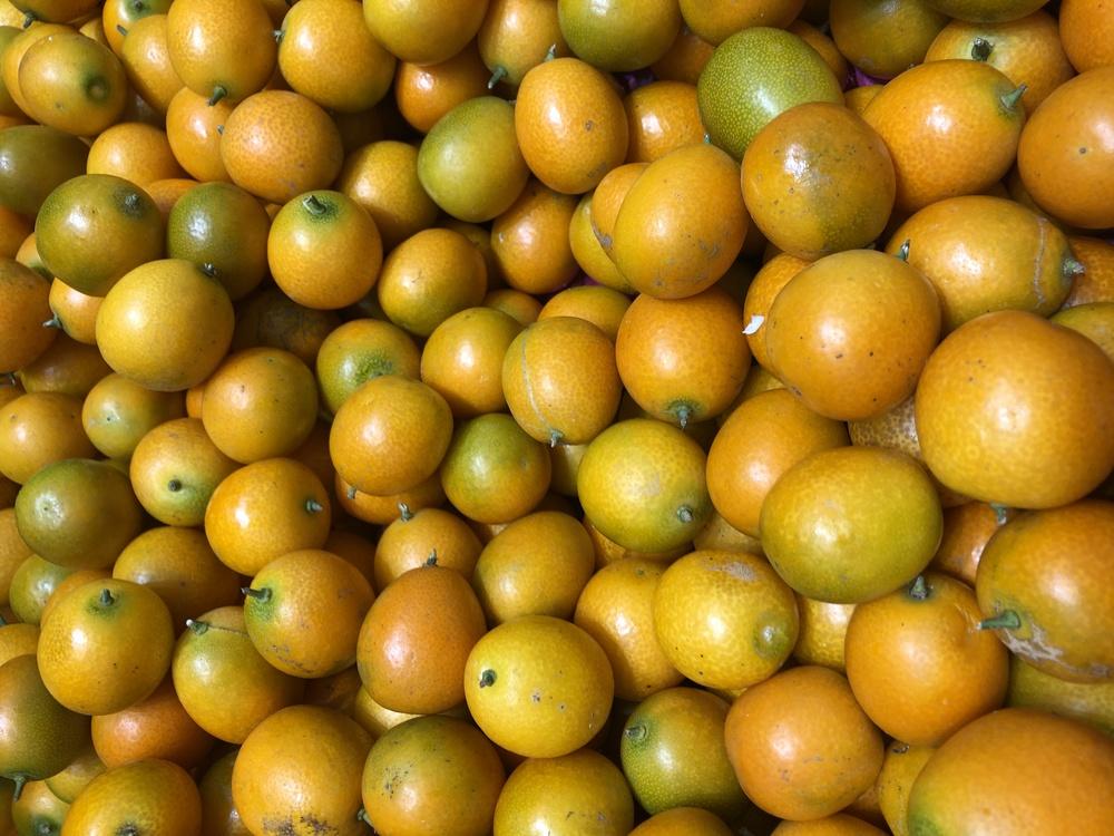 Clementine,Lemon,Key Lime