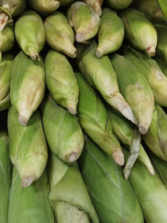 Vegetable,Local Food,Ingredient