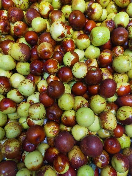 Burmese Grape,Natural Foods,Camu Camu