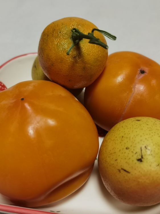 Bitter Orange,Persimmon,Rangpur