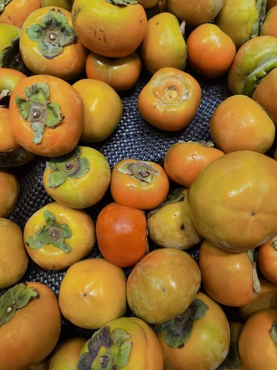 Tomato,Natural Foods,Winter Squash